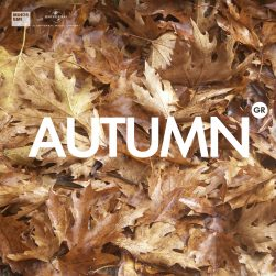 covers various spotify autumn